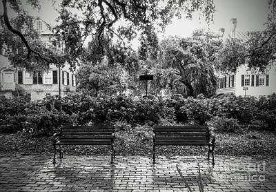 Photograph - Savannah Park Bench And A Box Of Chocolates  by Paul Wilford