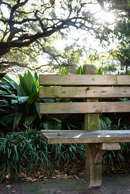 Savannah Park Bench Art Print by Erin Cadigan