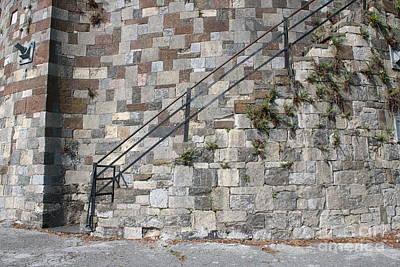 Fall Animals - Savannah River Walk Steps by Carol Groenen