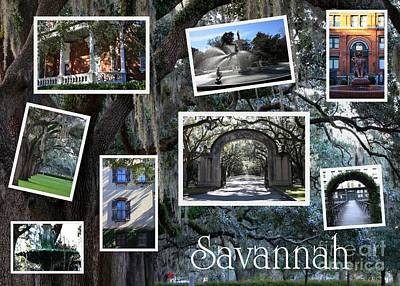 Photograph - Savannah Scenes Collage by Carol Groenen