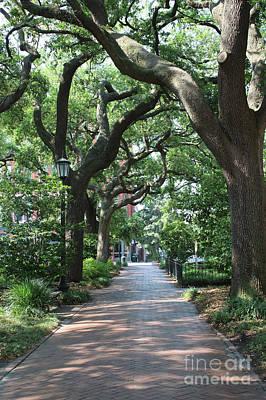 Photograph - Savannah Sidewalk With Trees by Carol Groenen