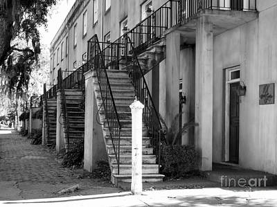 Photograph - Savannah Steps Black And White by Carol Groenen