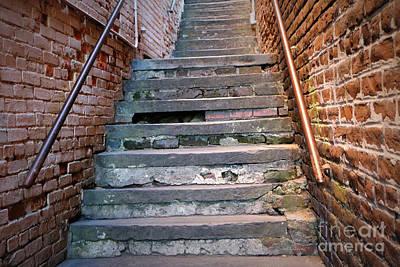Photograph - Savannah Steps Perspective by Carol Groenen
