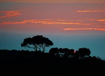 Photograph - Savannah Sunset by William Bartholomew