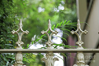 Photograph - Savannah White Fence by Heather Green