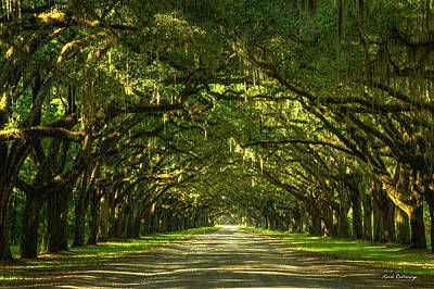 1736 Photograph - Savannah Wormsloe Plantation Live Oak Alley Art by Reid Callaway