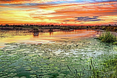 Photograph - Savannas Sunset by David A Lane