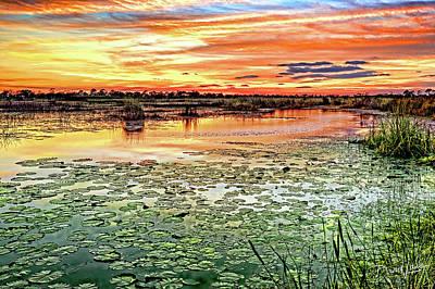 Savannas Sunset Art Print