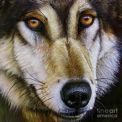 Save The Wolf Art Print by Jurek Zamoyski