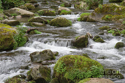 Photograph - Savegre River  by Chris Scroggins