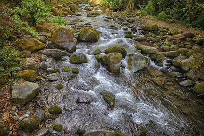 Photograph - Savegre River - Costa Rica 2 by Kathy Adams Clark