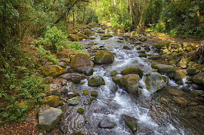 Photograph - Savegre River - Costa Rica 3 by Kathy Adams Clark