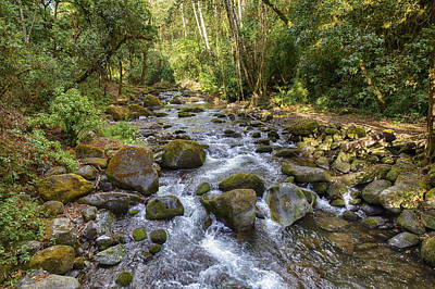 Photograph - Savegre River - Costa Rica by Kathy Adams Clark