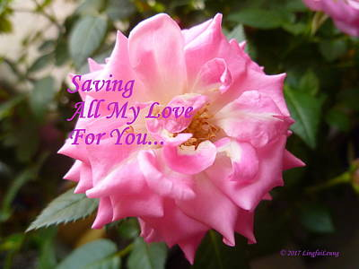 Photograph - Saving All My Love For You Rose by Lingfai Leung