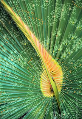 Saw Palmetto Color Design Art Print by Rosalie Scanlon