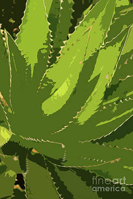 Digital Art - Sawtooth Leafed Aloe Vera by Christiane Schulze Art And Photography