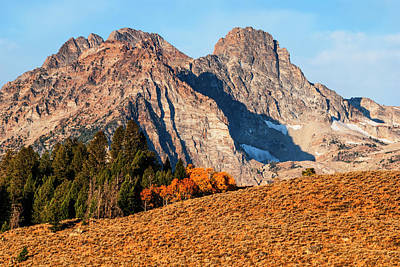 Photograph - Sawtooth Mountain In Stanley Idaho by Vishwanath Bhat