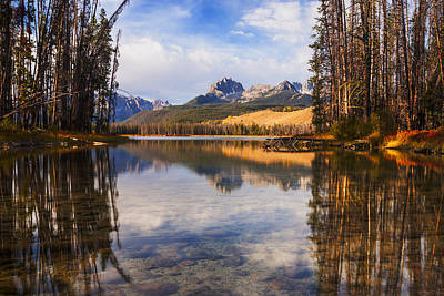 Photograph - Sawtooth Mountains Through The Trees In Stanley Idaho by Vishwanath Bhat