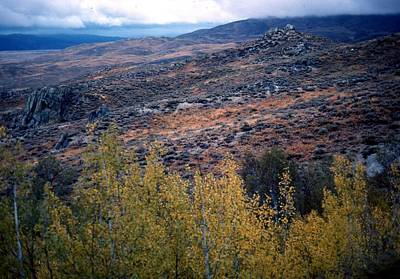 Photograph - Sawtooth National Forest 1 by John Schneider