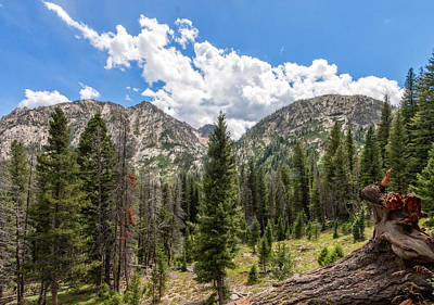 Photograph - Sawtooth Wilderness 1 by Dave Hall