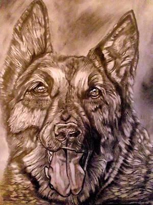 German Shephard Drawing - Say Ahh by Herbert Renard