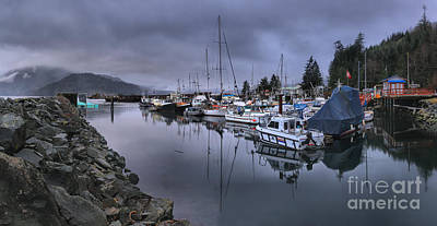 Photograph - Sayward British Columbia Marina by Adam Jewell