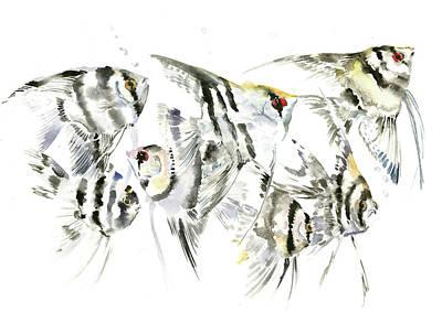 Animals And Feng Shui Art Wall Art - Painting - Scalar, Anbelfish Aquarium Fish by Suren Nersisyan