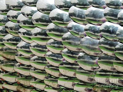 Photograph - Scale Pattern by Randall Weidner