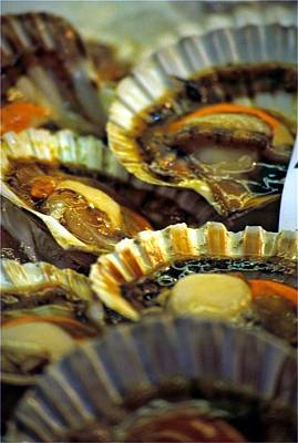 Scallops At Rialto Market In Venice Art Print by Michael Henderson