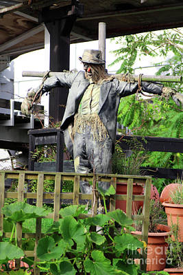 Photograph - Scarecrow Art by Doc Braham