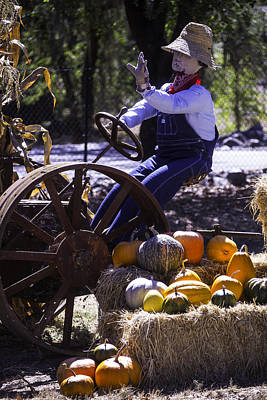 Grape Leaves Photograph - Scarecrow On Tractor by Garry Gay