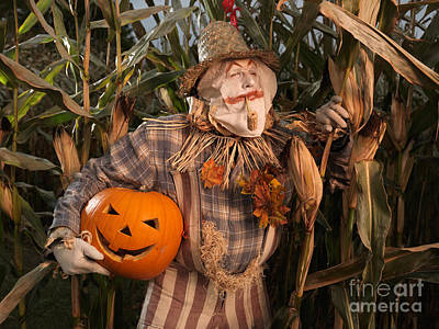 Scarecrow With A Carved Pumpkin  In A Corn Field Art Print by Oleksiy Maksymenko