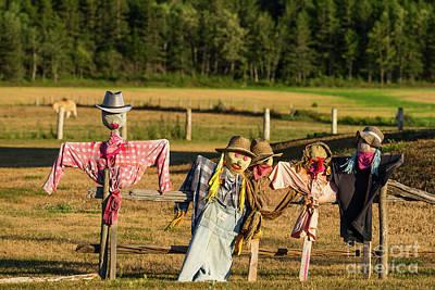 Photograph - Scarecrows by Les Palenik