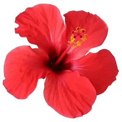 Digital Art - Scarlet Hibiscus Tropical Flower  by Tracey Harrington-Simpson