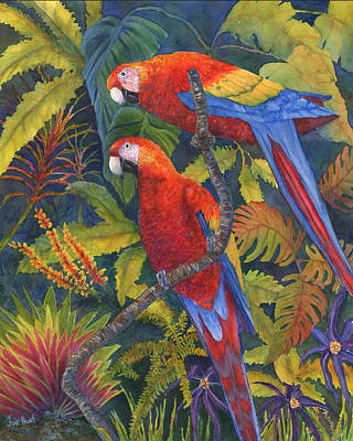 Scarlet Macaw Painting - Scarlet Macaws by June Hunt