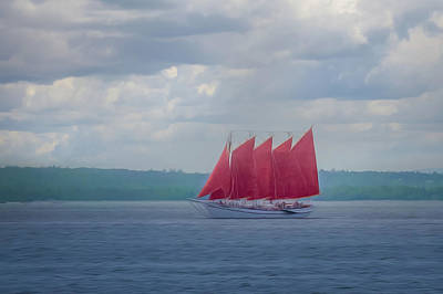 Photograph - Scarlet Sails by Elvira Pinkhas