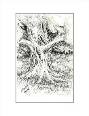 Drawing - Scary Tree by Ruth Renshaw