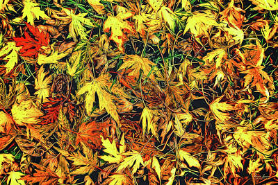 Photograph - Scattered Autumn Leaves by Anna Louise