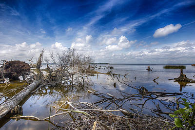 Photograph - Scattered Clouds by Alan Raasch