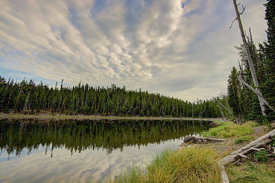 Photograph - Scaup Lake by Mark Harrington