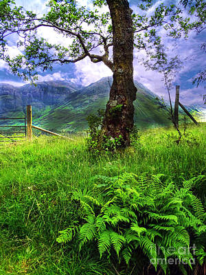 Photograph - Countryside At Glencoe by Judi Bagwell