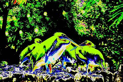 Photograph - Scene From A Zoo-5 by Anand Swaroop Manchiraju