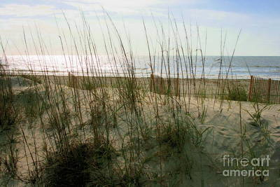 Scene From Hilton Head Island Art Print