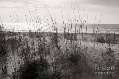 Photograph - Hilton Head Dunes Black And White by Angela Rath