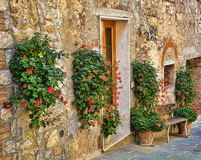 Photograph - Scene In Tuscany by Vickie Bushnell