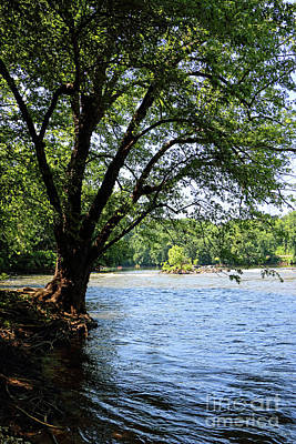 Photograph - Scene Of The James River From The Bank 0186vt by Doug Berry