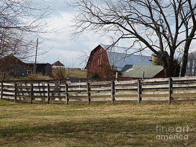 Art Print featuring the photograph Scene On The Farm by Donald C Morgan
