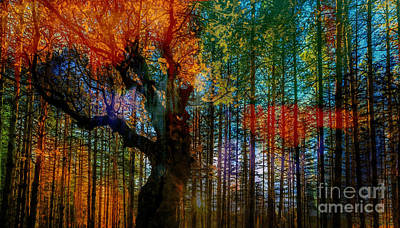 Wild Trees Original by Gull G