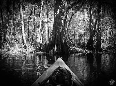 Photograph - Scenes From A Kayak, No. 10 by Elie Wolf