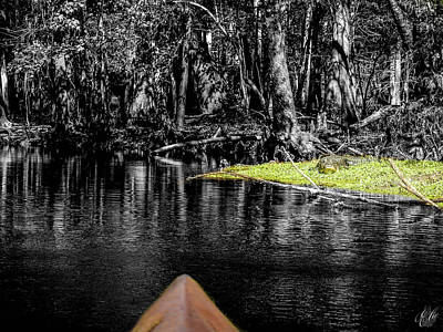 Photograph - Scenes From A Kayak, No. 12 by Elie Wolf
